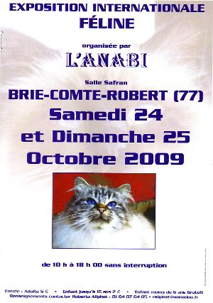 Poster of the cat show Brie-Comte-Robert 2009.