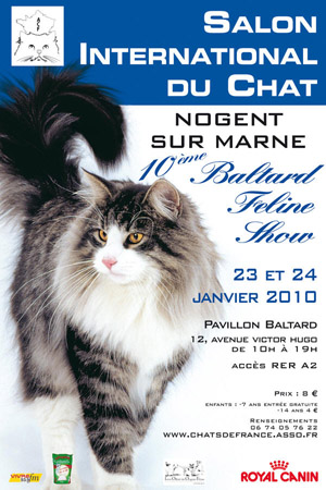 Poster of feline show in Pavillon Baltard 2010. This poster is accompagnied of a wanderfull photo of cat.
